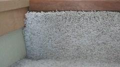 Staple Gun - Tacking Carpet Down Stock Footage