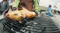 Guinea pig on the grill Stock Footage