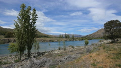 New Zealand river with poplars - stock footage