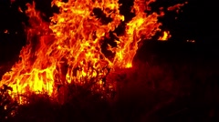 Wall of Fire Absorbing Dry Grass on the Field in the Dark Stock Footage