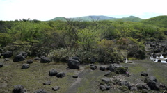 Hallasan Mountain, a heritage National Park at Jeju island Korea. Stock Footage