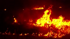 Bright Orange Flames Dancing Over a Field in Darkness Stock Footage