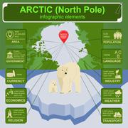 Arctic (North Pole) infographics, statistical data, sights Stock Illustration