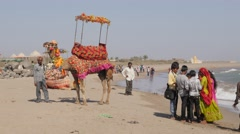 Tourists and camel on beach ,Veraval,Somnath,India Stock Footage