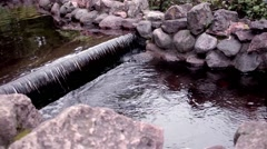 Castle waterfall move Stock Footage