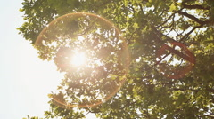 A beam of light through the foliage of a tree Stock Footage