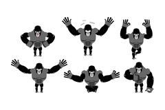 Gorilla set  poses. Expression of Emotions monkey. Wild beast and evil good.  Stock Illustration