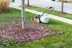 Neatening up the lawn in autumn or fall Stock Photos