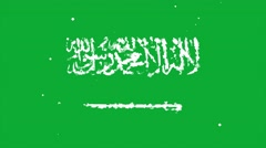 Celebratory animated background of flag of Saudi Arabia appear from fireworks Stock Footage