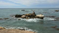 New Zealand Shag Point off shore rock island Stock Footage