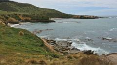 New Zealand Shag Point view of coast Stock Footage