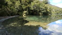 New Zealand Lake Gunn shallow margins Stock Footage