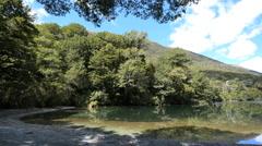 New Zealand Lake Gunn wooded banks Fiordland Stock Footage