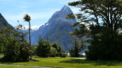 New Zealand Milford Sound Mitre Peak view from park Stock Footage