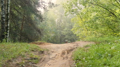 Cyclist rides through the forest Stock Footage