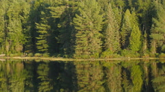 Coniferous forest with mirrored lake. Summer in Ontario, Canada. Stock Footage