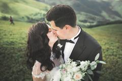 Beautiful young couple on their wedding day. Portraint close-up Stock Photos