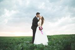 Beautiful couple in field, Lovers or newlywed posing on sunset with perfect sky Stock Photos