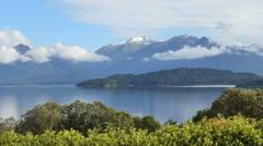 New Zealand Lake Manapouri birds Stock Footage