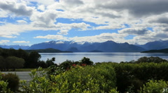 New Zealand Lake Manapouri beyond plants Stock Footage