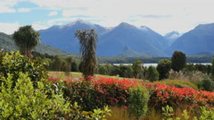 New Zealand Lake Manapouri Stock Footage