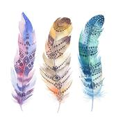 Hand drawn watercolor paintings vibrant feather set. Boho style Stock Illustration