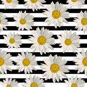 Seamless pattern with daisy flowers - stock illustration