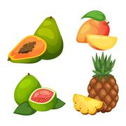 Tropical fruits vector set Piirros