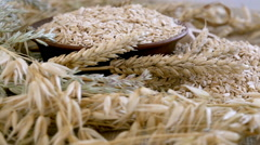 Oat groats. Fresh natural product Stock Footage