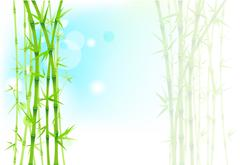 Bamboo asian background Stock Illustration