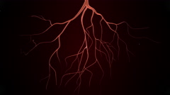 Rotating Blood Vessels Stock Footage