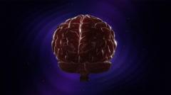 Rotating Human Brain Stock Footage