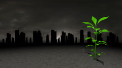 Green Plant Survives In The Polluted City Stock Footage
