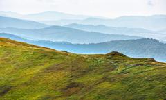 hillside meadow in mountain - stock photo