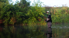 Man goes fly fishing in the morning river Stock Footage