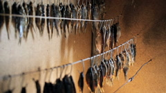Fisherman fresh fish hangs on a rope. Dried fish hanging on a line Stock Footage