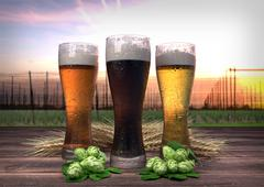 Three kinds of beer, barley, hops with hop-garden background - 3D render Stock Illustration