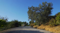 Olive tree and road in the italian countryside Stock Footage
