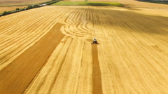 Aerial view of combine harvester gathers the grains of wheat in the field 4K Stock Footage