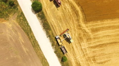 Aerial view of combine harvester harvesting wheat and bulk on truck n field, 4k Stock Footage