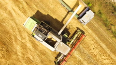 Aerial view of a combine harvester harvesting wheat in field in 4k Stock Footage