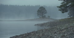 Small island with a tree in the middle of a lake shrouded in fog.MXF Stock Footage