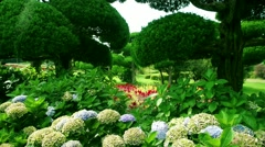 Lush Japanese garden. Nokonoshima Island Park. Slow motion panning. Stock Footage