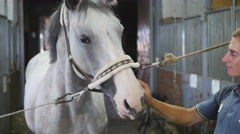 Closeup portrait of a man feeding and caressing a horse. Care for the animals. Stock Footage