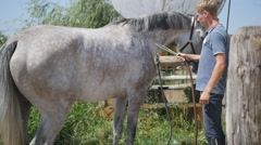 Young man cleaning the horse by a hose with water stream outdoor. Slowmotion Stock Footage