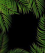Beautifil Palm Tree Leaf  Silhouette Background Vector Illustrat Stock Illustration