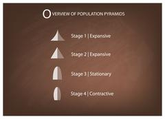 Different Types of Population Pyramids on Chalkboard Background Stock Illustration