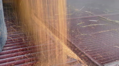 Storage of cereals after harvest Stock Footage