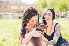 Tattooed young women playing with pit bull terrier in urban park Stock Photos
