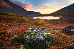 Autumn colours in Malaya Belaya River valley at dusk, Khibiny mountains, Kola - stock photo